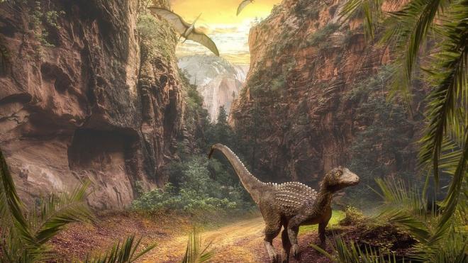 ВКитае впервые вмире нашли останки окаменелого динозавра, сидящего накладке яиц