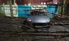 За ночь на петербургские машины упали деревья, дорожные знаки и щиты