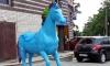 В Петербурге появился гей-конь