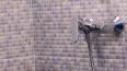 Петербуржцы жалуются на отсутствие воды в доме по ...