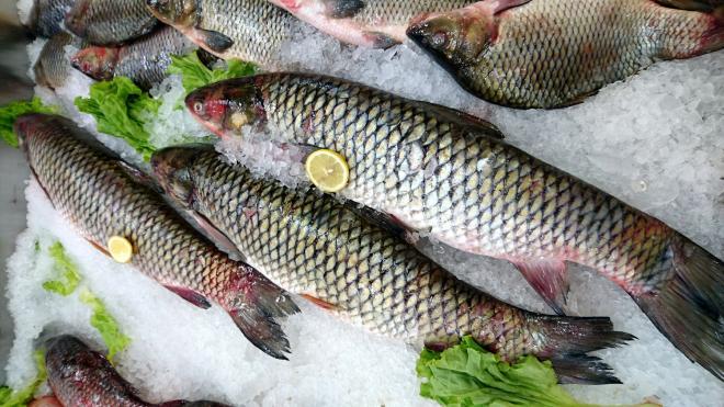 В Петербурге выявили фантомную площадку по продаже небезопасной рыбы