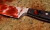 В Архангельской области школьница зарезала бабушку двумя ножами