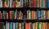 В Петербурге снова пройдёт день книгодарения