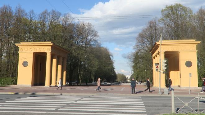 В акции с нацистской символикой в Петербурге собирались принять участие несовершеннолетние
