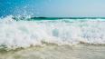В Петербурге открыты 24 официальных пляжа