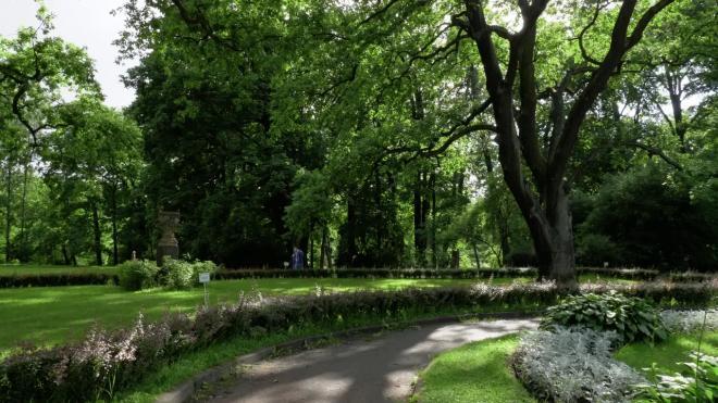 В нескольких городских парках обновят детские и спортивные площадки