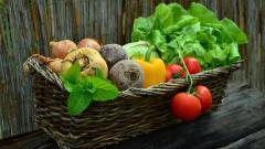 Импортеру овощей и фруктов в Петербурге выплатят более 15 миллионов рублей долга