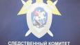 На Урале задержаны подозреваемые в убийстве пропавшей ...