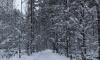 Юноша с наркотиками пытался спрятаться в снегу от полиции