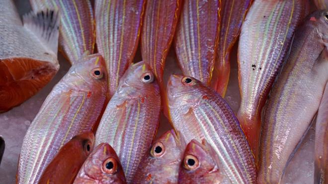 Учёные нашли непорочно зачавшую рыбу