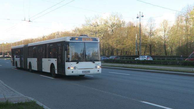 Петербург передаст Ленобласти 6 автобусных маршрутов
