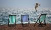 За летние выходные в Петербурге придется расплатиться: ожидаются сильный ветер и гроза