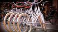 Смольный построит четыре дополнительные велодорожки ...