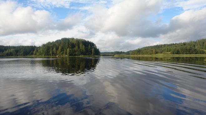 Археологи из Петербурга нашли в Карелии захоронение времен викингов