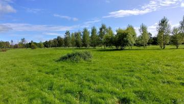Специалисты уберут лишнюю воду в парке Академика Сахарова