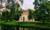 КГИОП актуализирует каталог исторических деревьев