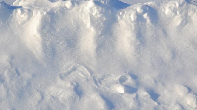 В Петербургесредняя высота снежного покрова достигла максимальных значений