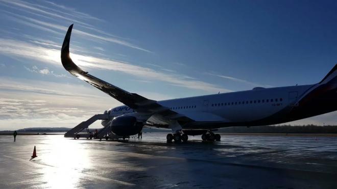 Вылетевший в Петербург самолет вернулся в Сургут из-за сработавшего датчика