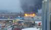 Пожарные спасали лошадей из полыхающей конюшни под Петербургом