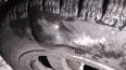 В Выборгском районе более 16 автомобилей стали жертвами ...
