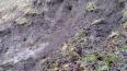 В Кронштадте обрушился земляной овраг Петровского дока