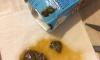 Жительница Петербурга купила в магазине детский сок с плесенью