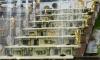 Петергоф начал 70-й сезон фонтанов с поднятия цен на билеты