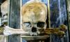 На Васильевском острове в храме Благовещения строители обнаружили человеческие останки