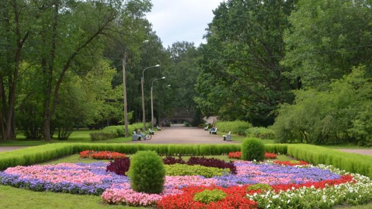 Садово-парковые предприятия преобразуют в государственные учреждения