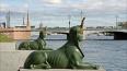 Охранник-морж пропал после купания в Малой Невке