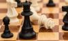 В Петербурге стартовал шахматный чемпионат