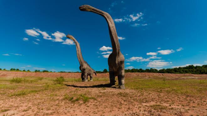 Аргентинского динозавра признали самым древним титанозавром Земли