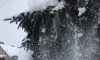 Петербуржцам 2 декабря пообещали снегопад