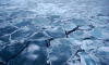 Петербургские исследователи обнаружили лёд возрастом более миллиона лет
