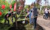 Николай Бондаренко: необходимо штрафовать компании за плохую уборку дворов