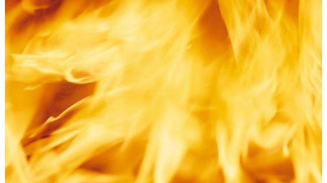 В Ново-Девяткино 11-летний мальчик сгорел заживо в бытовке