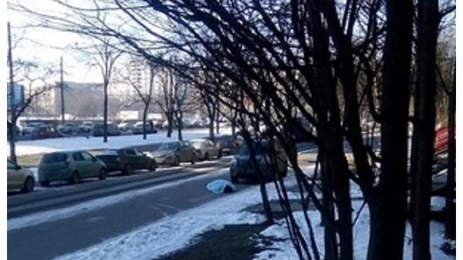 Полиция забыла про труп человека на улице Белы Куна