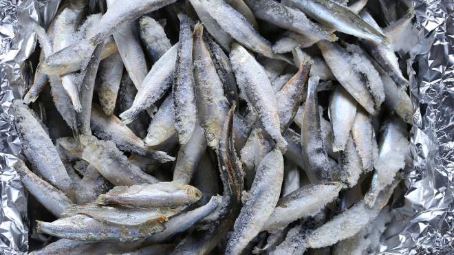 Полиция Петербурга не пустила в город контрабандную рыбу