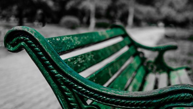 В Калининском районе Петербурга покрасили скамейки и отчистили фасады от пыли