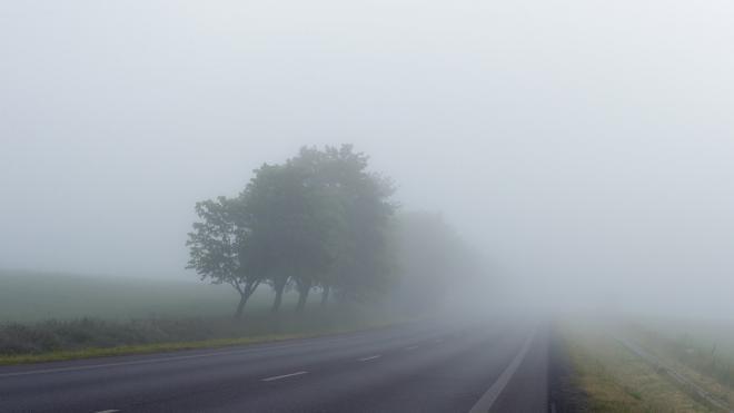 Утром среды в Ленобласти ожидается туман