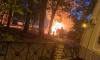 На Васильевском острове неизвестные подожгли BMW