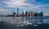 Жители округа Нью-Йорка подали иск против ВОЗ