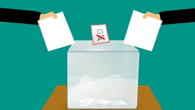 В преддверии выборов на сайте администрации Выборгского района появился новый раздел