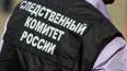 Петербургский следком заявил о снижении уровня преступно ...