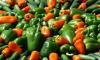 На границе с Финляндией у россиян изъяли 95 кг овощей