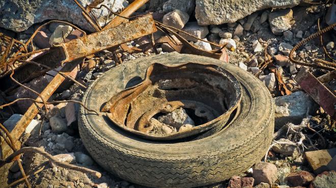 Россияне собрали более 30 тысяч подписей против сжигания мусора
