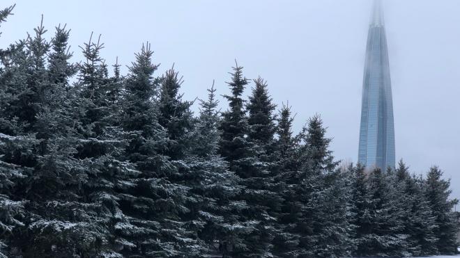 Водителей Петербурга предупредили о видимости менее 500 метров из-за густого тумана
