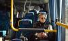 """Автобусы, замещающие станцию метро """"Лесная"""", перевезли почти 900 тысяч человек"""