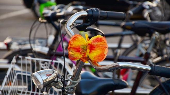 Велосипеды захватили дороги: в центре Петербурга затруднено движение из-за велопарада
