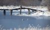 В Пушкинском районе введут особые охраняемые границы в долине реки Поповки
